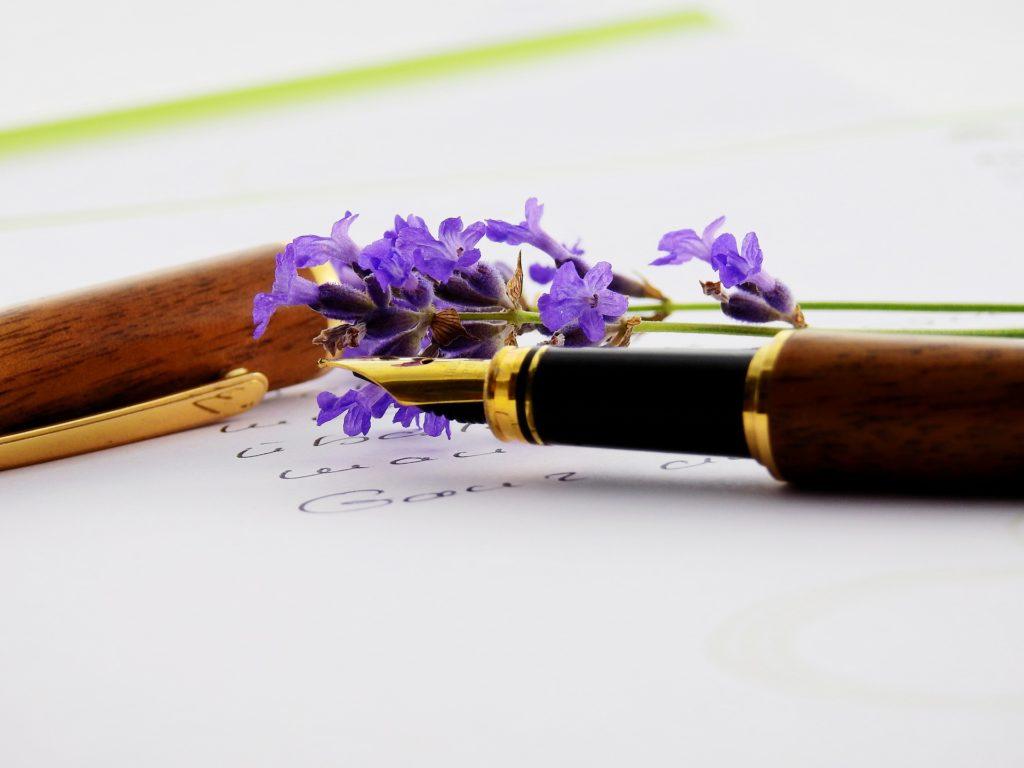 stylo plume posé sur une feuille avec quelques pétales fleurs